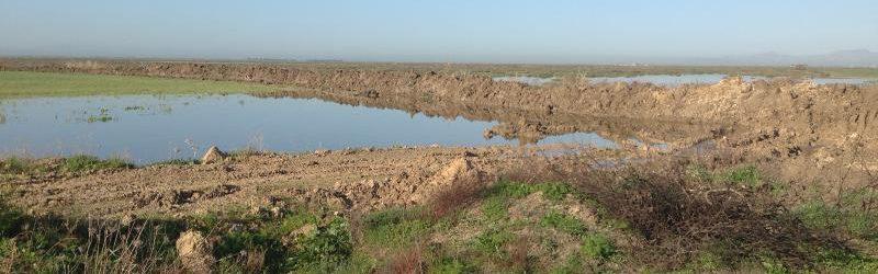 Su politikası önerimiz