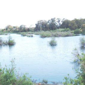 Gazimağusa Belediyesi'nin kanalizasyon sorunuyla ilgili mazeret üretme şekli üzüntü verici
